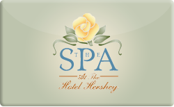 Buy The Chocolate Spa Gift Card