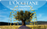 Buy L'Occitane Gift Card